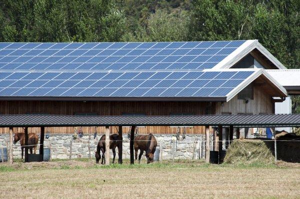 Cada vez es más común el autoconsumo en instalaciones agrícolas./Shutterstock